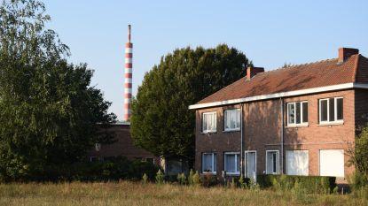 """Cruciale maanden voor Klein Rusland: """"Omvorming van oud slibstort tot natuurgebied is enorme troef voor leefbaarheid van de wijk"""""""