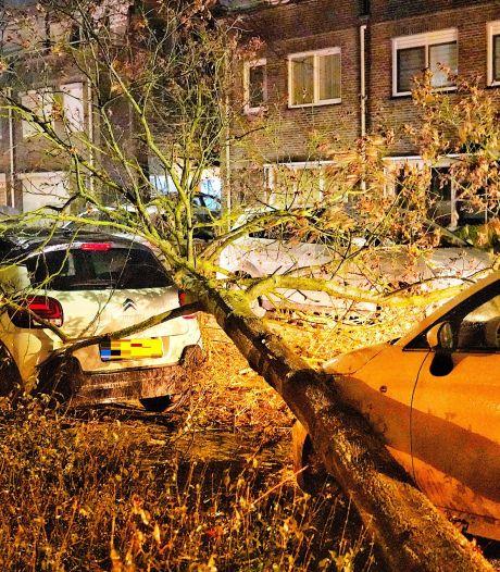 Stormschade na flinke windstoten, tijdje geen HSL-treinen tussen Brabant en Rotterdam