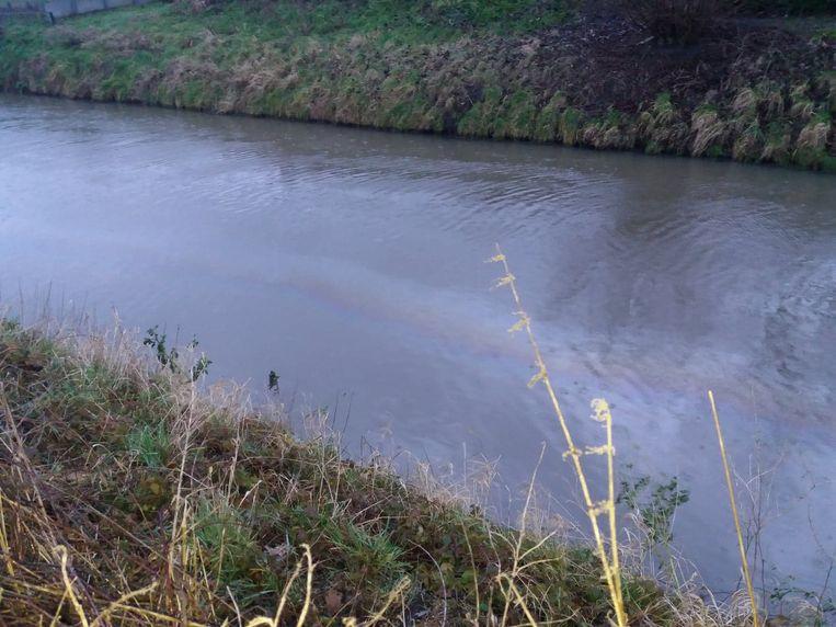Vervuiling op de Gavebeek na lek in tank bij Molecule