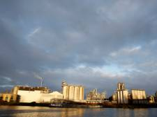 Staking bij voedingsmiddelenproducent Cargill in Sas van Gent