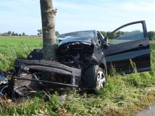 Auto botst tegen boom in Prinsenbeek