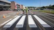 VIDEO. Eerste 3D-zebrapad op Vlaamse gewestweg aangelegd in Beersel