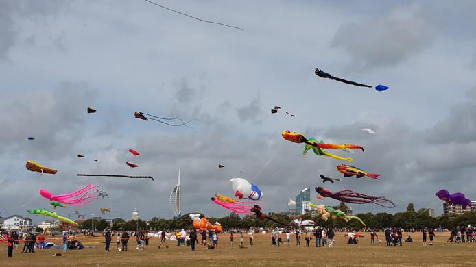 Ongeveer 200 vliegeraars namen deel aan het internationale festival.