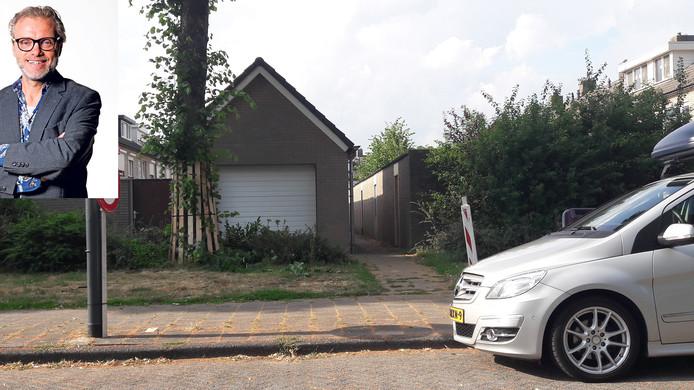 Een van de lindes in de Groen van Prinstererlaan in Waalwijk