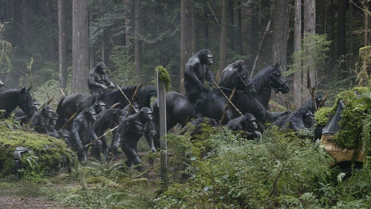 null Beeld Dawn of the planet of the apes