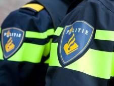 Drie meisjes gezocht die getuige waren van gewelddadige straatroof in Den Bosch