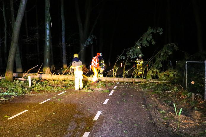 Een omgevallen boom hield de brandweer vannacht bezig.