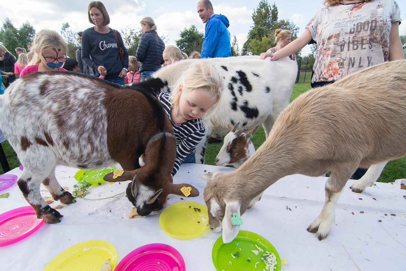 Foto van een paar jaar geleden, toen het gewoon kon: kinderen geven de geitjes eten op de kinderboerderij in Houten.