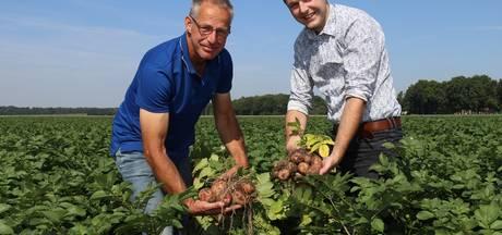 Pieperliefhebbers staan al vlug op de stoep van Flevolandse boeren