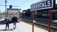 """""""Dubbel spoor nodig tussen Herentals en Turnhout"""""""