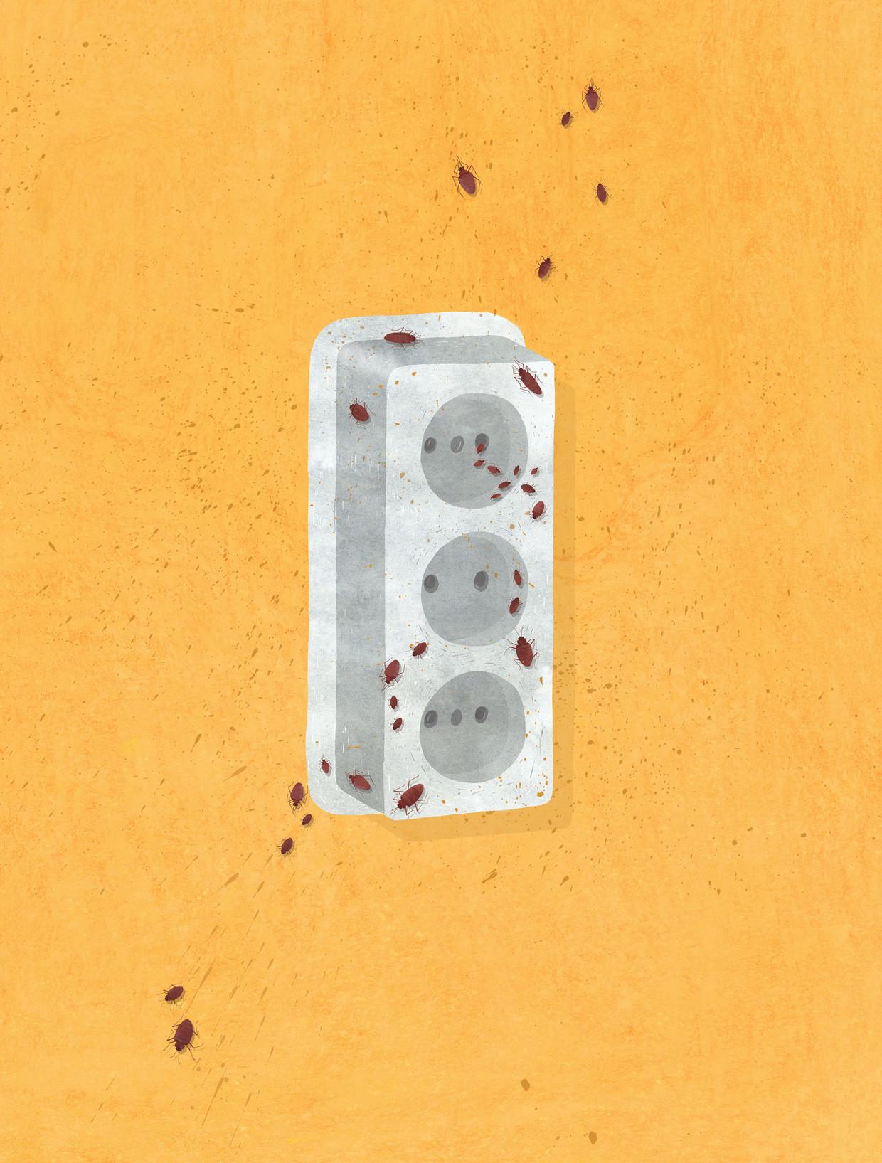 Om een bedwantsenbehandeling goed te kunnen uitvoeren moeten stopcontacten van de muur.