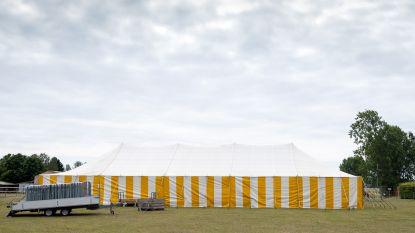 Twee weken na brand in loods: Pallieterfeesten gaan door in tent