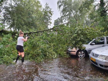 Ontwortelde bomen, blikseminslag en ondergelopen wegen: wolkbreuk leidt tot overlast en schade in regio