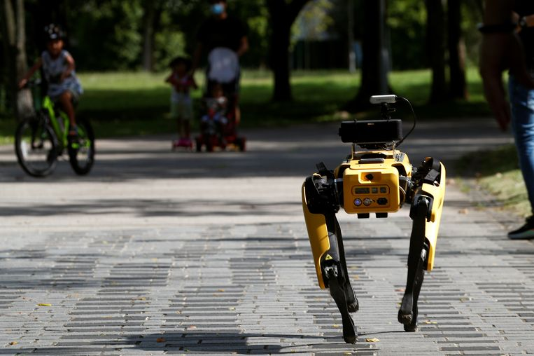 A four-legged robot dog called SPOT patrols a park as it undergoes testing to be deployed as a safe distancing ambassador, following the coronavirus disease (COVID-19) outbreak, in Singapore May 8, 2020. REUTERS/Edgar Su Beeld REUTERS