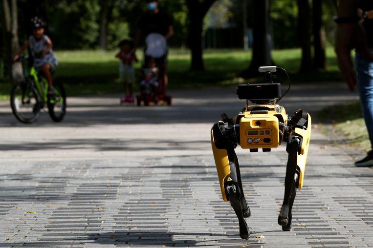 Een robothond moet bij wijze van test de afstand tussen mensen bewaken in Singapore. Beeld Reuters
