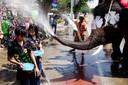 Een olifant spuit water over toeristen tijdens de viering van het boeddhistische nieuwjaar, bekend als Songkran, in Thailand. Foto Jorge Silva