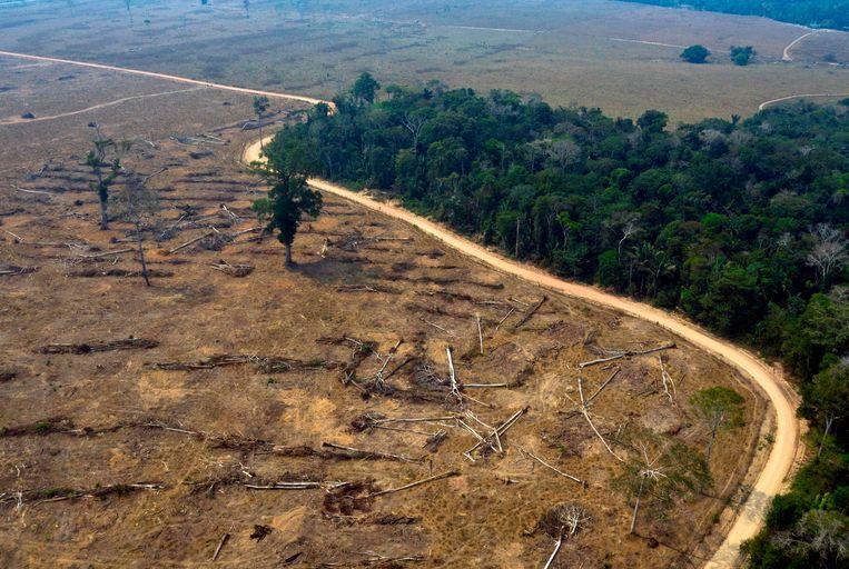 Door brand ontbost gebied in de Amazone. Beeld AFP