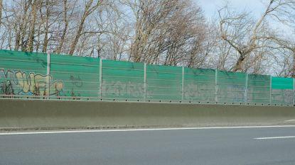 AWV begint met snoeiwerken om plaats te maken voor geluidsschermen langs Brusselse ring