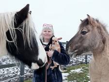 Na persoonlijk drama ook nog kostbare zadels gestolen in Eibergen
