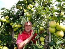 Fruittelers zetten alles op alles om de appeloogst te redden
