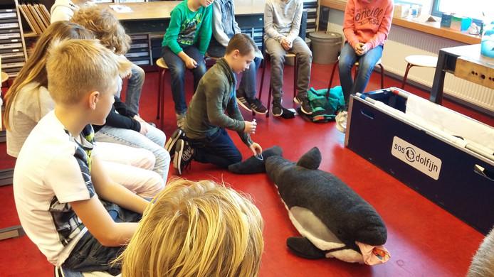 Een klaslokaal was ingericht als dolfijnenziekenhuis, waar werd uitgelegd hoe zieke zeezoogdieren worden behandeld.