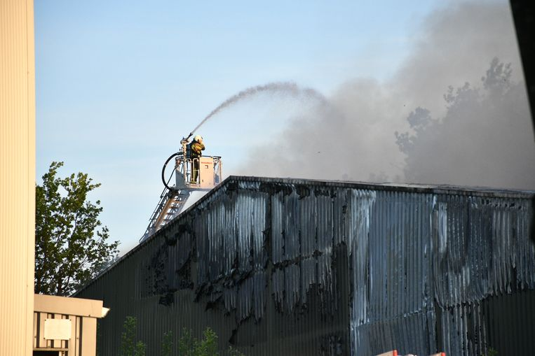 De brandweer krijgt bijstand uit Wuustwezel en Essen.