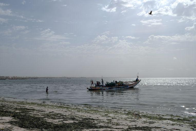 'We vissen in de hoop op betere dagen', zeggen vissers in Dakar. Beeld Sadak Souici