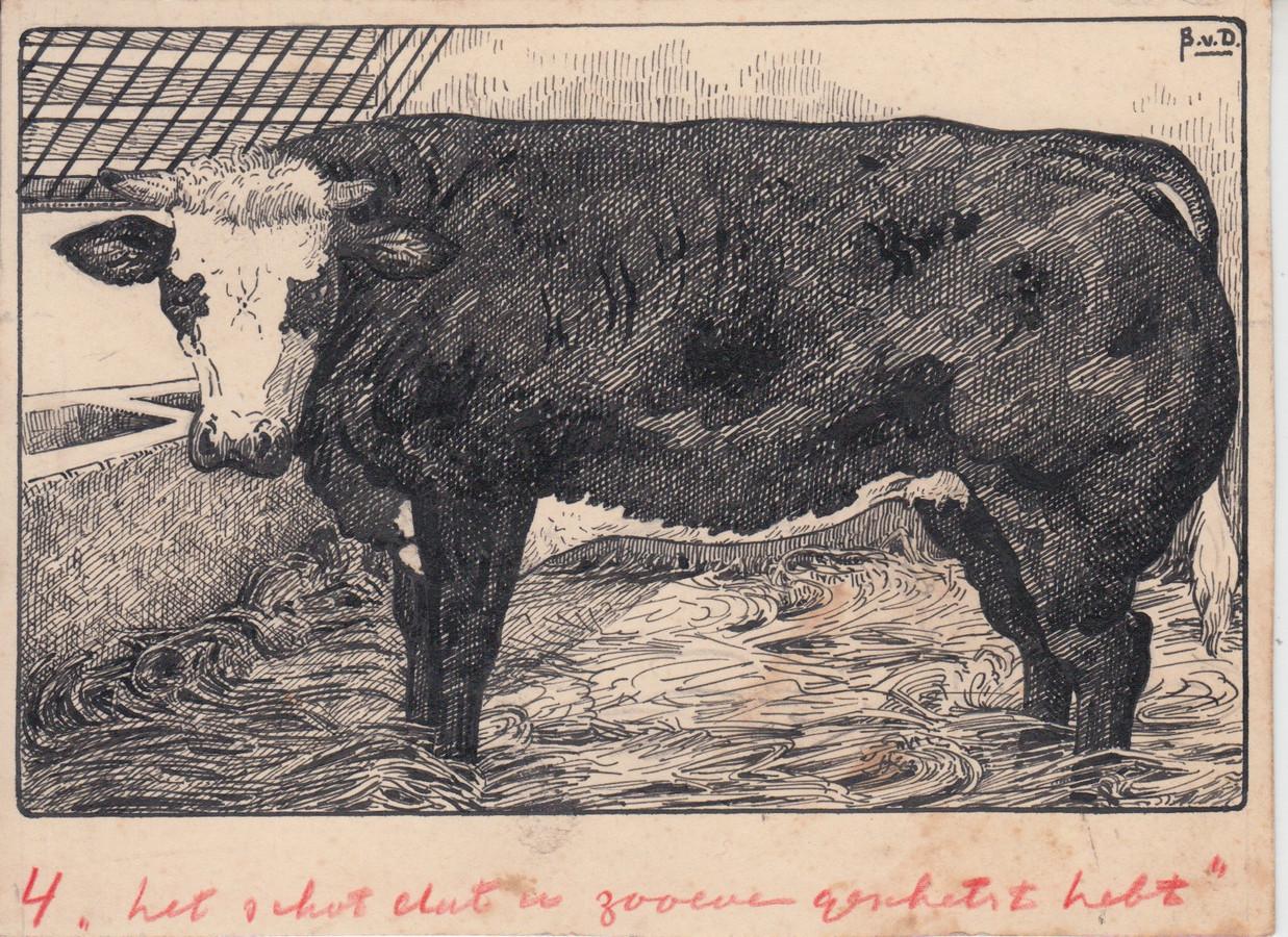 Bernard van Dam tekende mens en dier zoals hij ze ook daadwerkelijk zag.