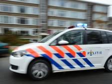 Ochtenaar rijdt tijdens vlucht voor politie bijna agenten aan