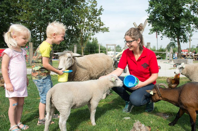 Kelly Marijnissen werkt al voor het derde jaar in de vakantie op de recreatieboerderij van Johan en Caroline in Wagenberg.