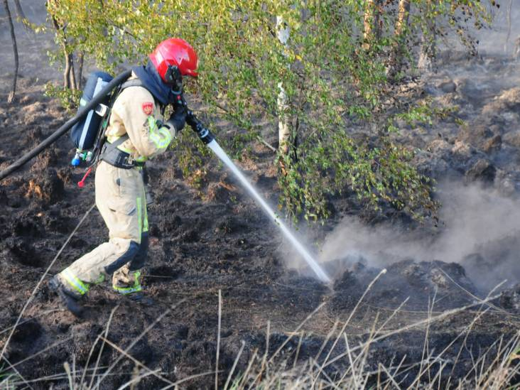 Natuurbrand legt deel bos bij Budel in de as