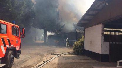 Hevige boerderijbrand in Klarenbos