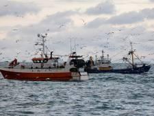 Urker vissers mijden Britse wateren: 'Het zekere voor het onzekere'