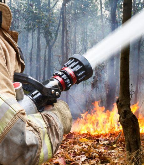 Grotere kans op natuurbranden in Brabant, wandelaars moeten extra alert zijn