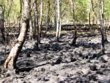 Rookoverlast in Helenaveen door enorme brand in Deurnsche Peel die nog nasmeult