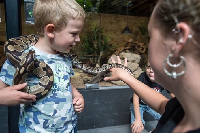 Verzorgster Lieveke laat Noah (l) en Levi uit Bergen op Zoom van heel dichtbij kennismaken met een slang.