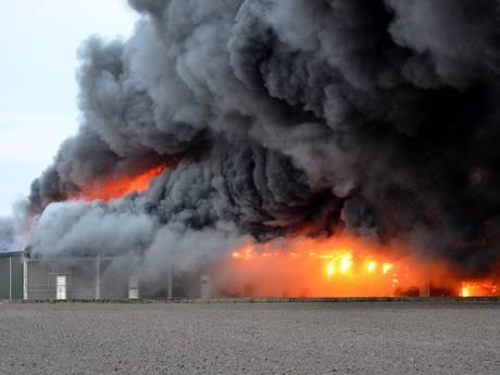 VIDEO: Grote uitslaande brand bij champignonkwekerij in Bavel legt twee loodsen in de as