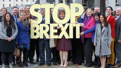 Schotse nationalisten willen Labour-regering steunen in ruil voor nieuw referendum over onafhankelijkheid