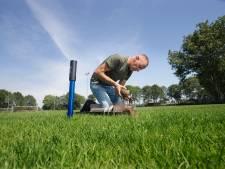 Voetbalclubs 't Peeske en Sprinkhanen kiezen voor echt gras
