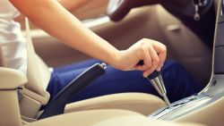 1 op de 10 jonge bestuurders stuurt kat naar verplichte opfrissingscursus rijbewijs