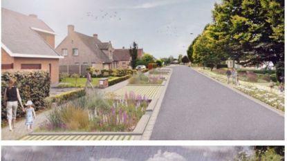 Herwaardering Sint-Amandsbeek maakt kans op Innovatieprijs 2020