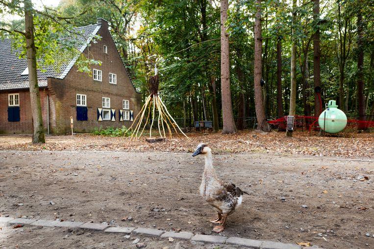 Het BioArt Village in het 'Duitse dorp' bij Eindhoven. De buitenmuren zijn slechts een façade, het zijn eigenlijk bunkers uit de Tweede Wereldoorlog.  Beeld Pauline Niks