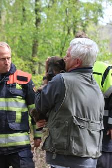 Hondje Toby uitgegraven na 3 benarde uren in Helvoirts konijnenhol