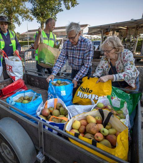 Vers van de pers, appelsap uit eigen tuin tijdens de sap-persdag in Oirschot