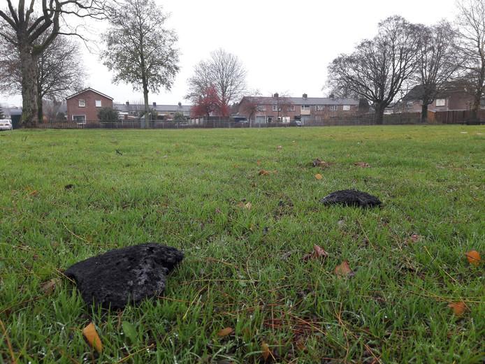 Zwartgeblakerde stukken op een veld bij de Ruyterstraat in Weurt.