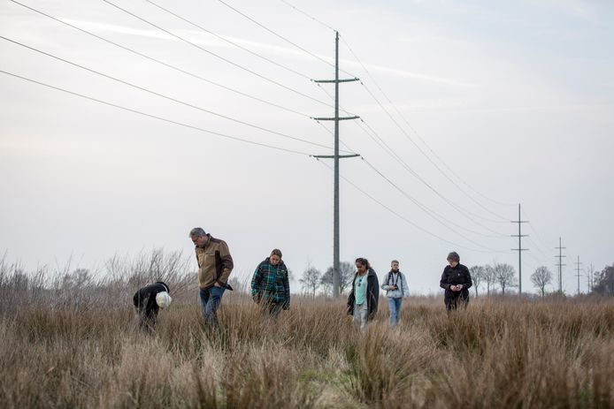 In de afgelopen jaren is het stuk grond regelmatig voor natuureducatie gebruikt, onder meer door het IVN.