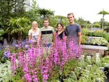 In Terheijden zetten plantenkwekers Madelon, Maarten, Marlijn en Mark het levenswerk voort