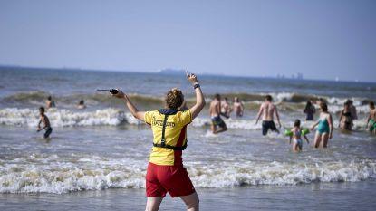 Enorm verraderlijke zee in Nederland: tientallen mensen uit het water gered, vier drenkelingen overleden