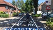 Leopoldstraat wordt fietsstraat