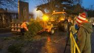 Geen kerstboomverbranding, wel verhakseling. Om kanker te bestrijden